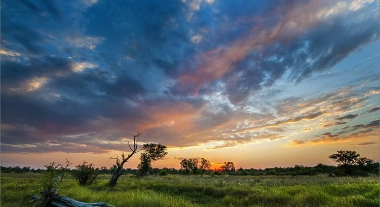 Sunset in Moremi Game Reserve, Botswana