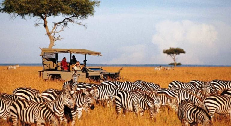 Game drive at Saruni Mara