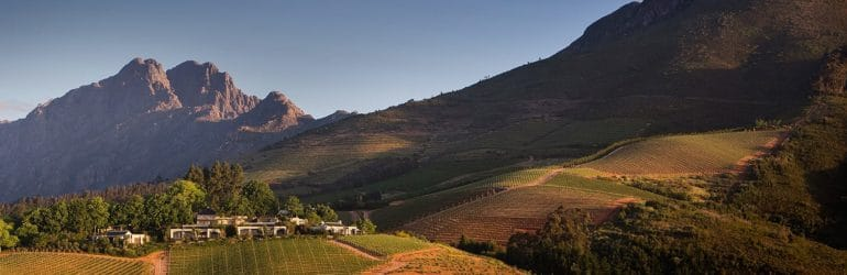 Cape Winelands South Africa