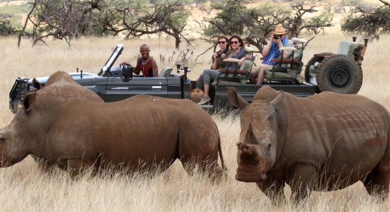 lewa wilderness rhinos