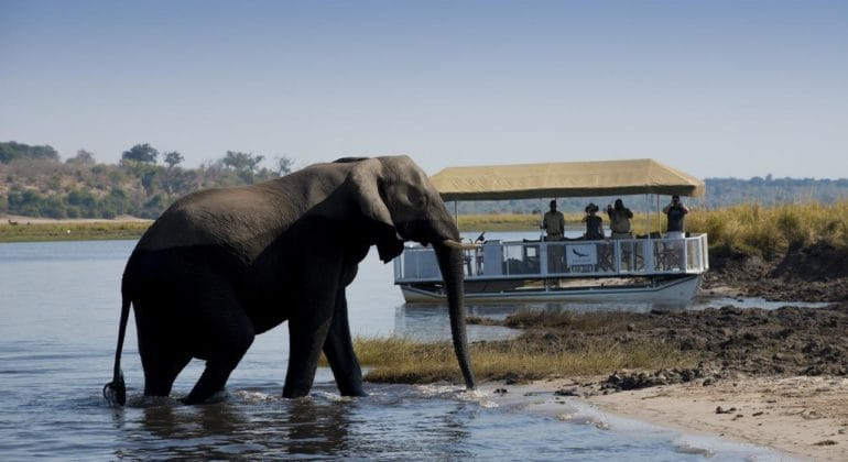 Expeditions Chobe Boat Cruises On The Chobe River