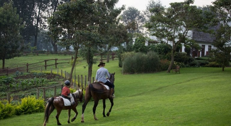 The Manor Horse Riding