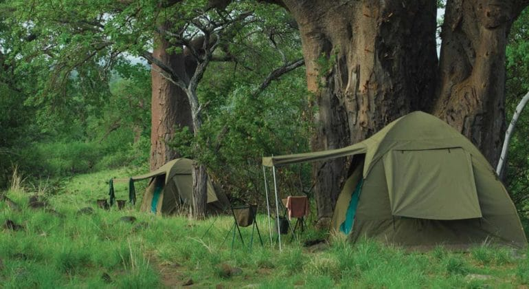 Fly Camp Tents