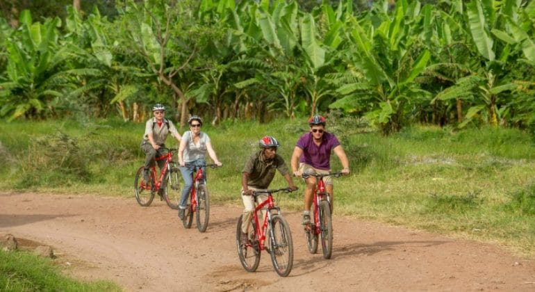 Wayo Africa Mountain Biking
